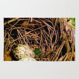 Bird's Nest Rug