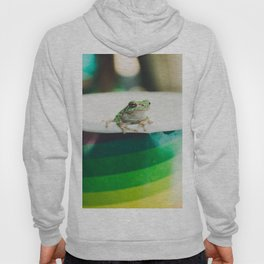 Frog of Many Colors Hoody