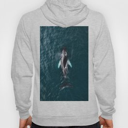 Humpback Whale in Iceland - Wildlife Photography Hoody
