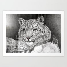 The Snow Leopard 2nd  Art Print