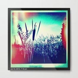 Lake Whatcom Metal Print