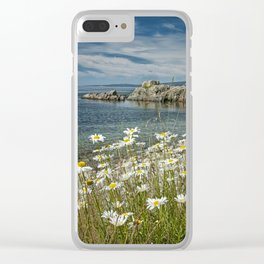 Daisies on Maine's Acadia Shoreline Clear iPhone Case