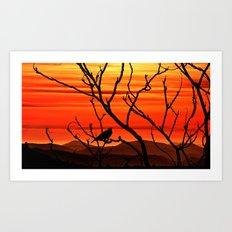 Blackbird's dusk Art Print