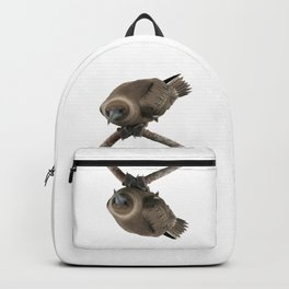 Curious young boobie Backpack