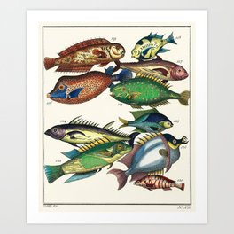 Illustrated Pacific Ocean Exotic Game Fish Identification Chart Art Print