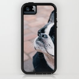 Bruce the Boston Terrier Pug iPhone Case