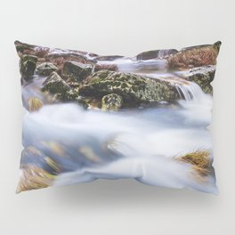 Deep in the woods there was a magic river Pillow Sham