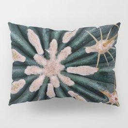 Cactus Plant Close-up Photogrpahy Round Photo Pillow Sham