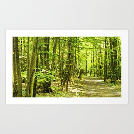 Pick a tree, any tree Art Print