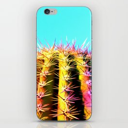 Colorful Cacti #1 iPhone Skin