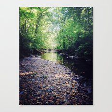 peace in the forest Canvas Print