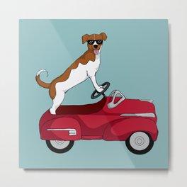 Driving Dog Metal Print