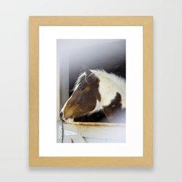 Windswept Winter Wonder Framed Art Print