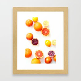 Winter Citrus 1 Framed Art Print