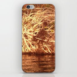 Uprooted Tree iPhone Skin