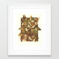 bird Framed Art Prints featuring Red-Throated, Black-capped, Spotted, Barred by Teagan White