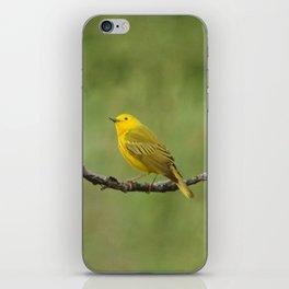 Yellow Warbler iPhone Skin