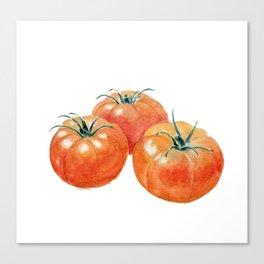 Three Tomatoes Canvas Print