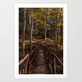 Wooden bridge crosses the forest lit by the autumn sun Art Print