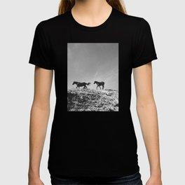 Pryor Mountain Wild Mustangs T-shirt