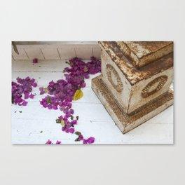 Purple pods Canvas Print