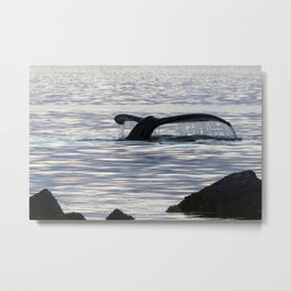 Whale at Dusk Metal Print