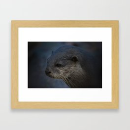 Small Clawed Otter Framed Art Print