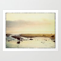 oregon coast seagulls Art Print