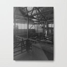 Shearing 2 Metal Print