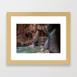 Man With Drowning Concerns (The Narrows, Zion National Park, Utah) Framed Art Print