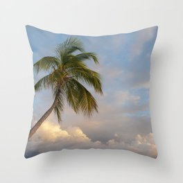 Serenity Over the Gulf Throw Pillow