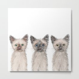 Triple Siamese Cats Metal Print