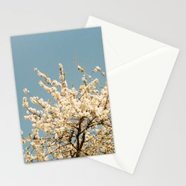Pear Tree (Two) Stationery Cards