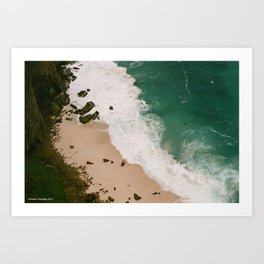 Cape Point Beach Art Print