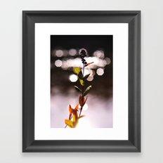 Vixen Framed Art Print