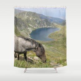 Horse near lake  landsape view Shower Curtain