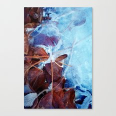 Winter frost Canvas Print
