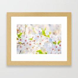 flower photography by Evelyn Framed Art Print