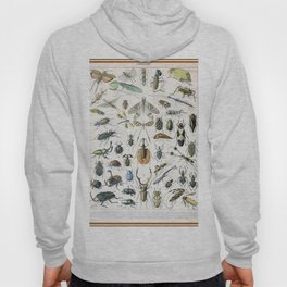 Adolphe Millot- Vintage Insect Print Hoody