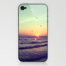 Siesta Key Sunset iPhone & iPod Skin