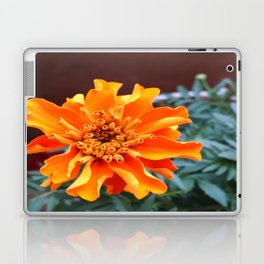 BRIGHT & BEAUTIFUL Laptop & iPad Skin