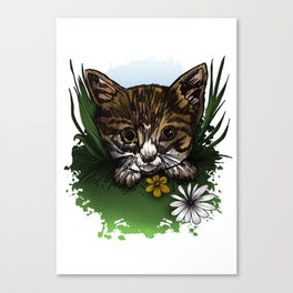 Calico Kitty Canvas Print