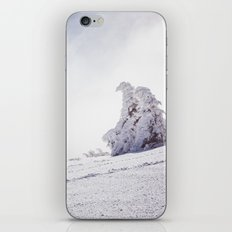 Frosty day iPhone & iPod Skin