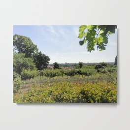 A Conclave's Vineyard Onlooking  The City of Rome Metal Print