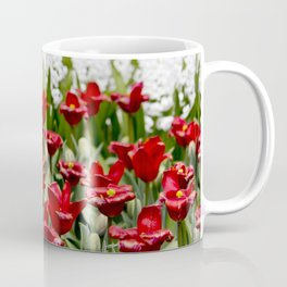 Red Tulip Field with White Hyacinth Flowers Blooming in the Background in Amsterdam, Netherlands Coffee Mug