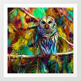 Barred Owl - As Deep as Forever Art Print