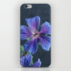 at the side of the road iPhone & iPod Skin