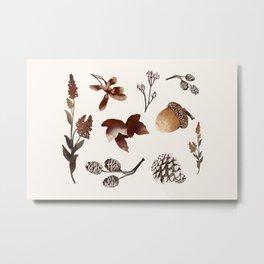 Autumn Treasure Metal Print