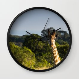 A Giraffe in the Wild Wall Clock