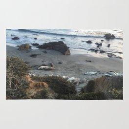 California_Seals Rug